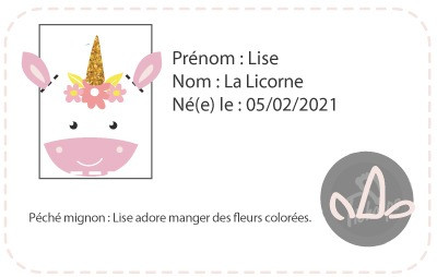 chaussons-bebe-cuir-souple-lise-licorne-carte-id