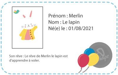 chaussons-bebe-cuir-souple-merlin-le-lapin-carte-id