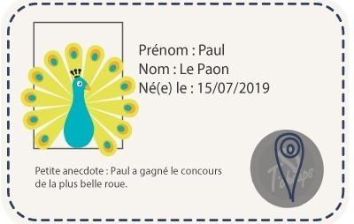 chaussons-cuir-souple-paul-le-paon-ientite