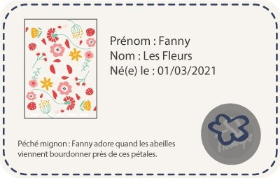 chaussons-bebe-cuir-souple-fanny-fleurs-carte-identite