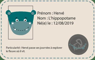 chaussons-curi-souple-hervé-hippopotame-identité