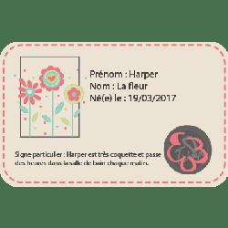 chaussons-bebe-cuir-souple-harper-fleur-carte-identite