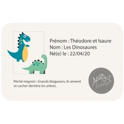 chaussons-bebe-cuir-souple-theodore-isaure-dinosaures-carte-id